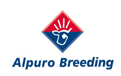 Alpuro en Alpuro Breeding gezamenlijke hoofdsponsor van sv Prins Bernhard.